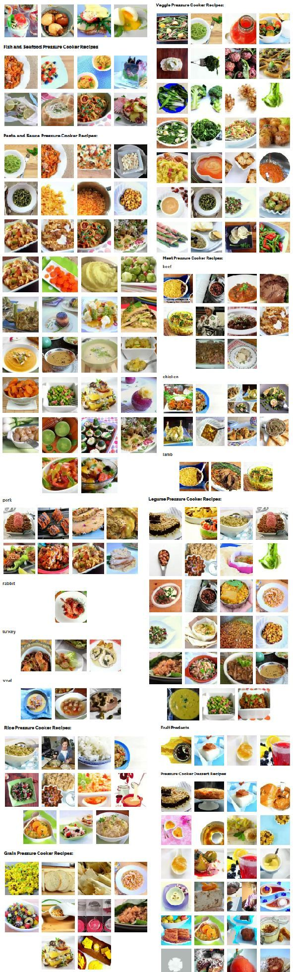 Huge visual recipe archive - you're bound to find inspiration, here!! What will you PRESSURE COOK, today?!?