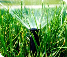 Heritage Lawns & Irrigation offers the best lawn care in Overland Park, KS, Leawood, KS and the Johnson County area. Call our lawn coaches at 913-396-6856 today. #lawncare #overlandpark #leawood #ks #lawnmaintenance
