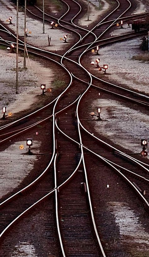track snakes... | by RG Fotowelt
