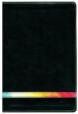 Biblia de Estudio Arco Iris RVR 1960, Verde/Multi-color, I. (RVR 1960 Rainbow Study Bible, Green/Multi-color LeatherTouch, I.)