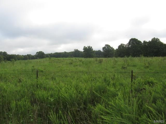 Hard to find property with no restrictions. 80 acres with well, watering system and electric on site just waiting for that new home. Property sits on the corner of two county roads and is located in the Salem R80 School District. The possibilities with this property are endless. Hunt, raise livestock or just build back in the woods and enjoy the privacy. Only about 6 miles from Salem MO