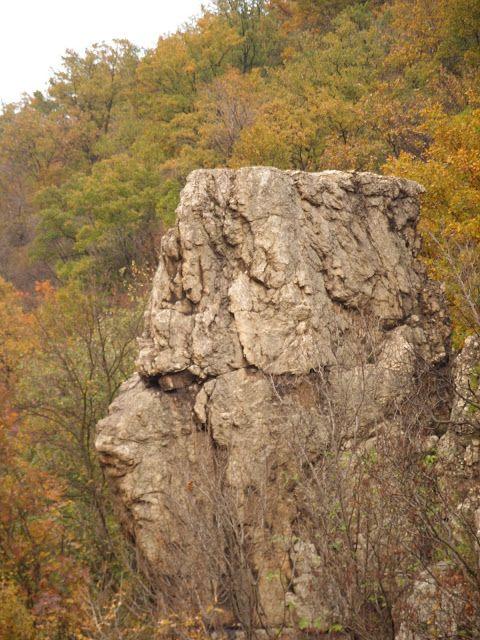 Romania Megalitica: Sfinxul Banatean.Sfinxul de la Topleţ. Sfinxul de pe Valea Cernei. Un megalit enigmatic, uitat de toti!