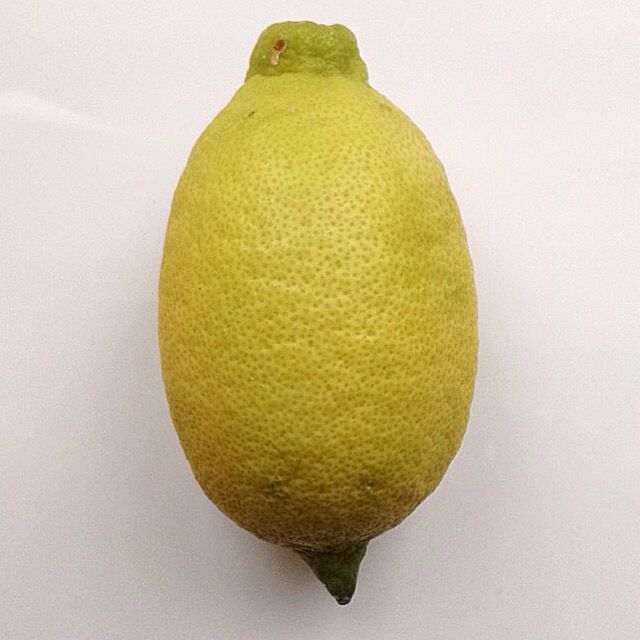 Home grown lemon