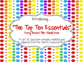 Elementary guidance theme for the whole year next year?  Top 10 essentials every bucket filler should know
