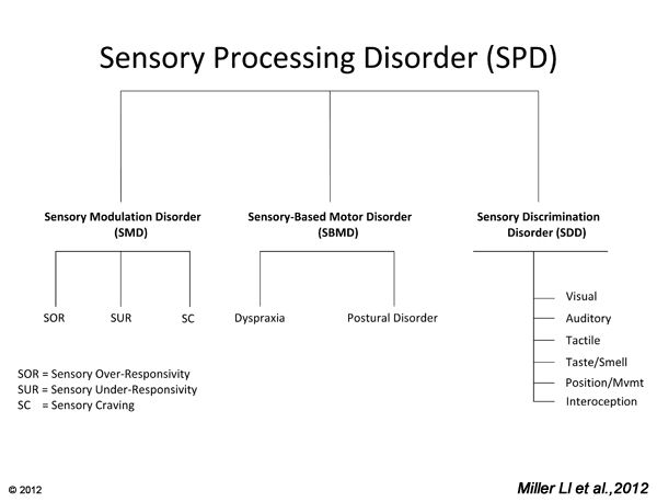 Definition of SPD, The Eight Sensory Systems, Prevalence of SPD: How often does it occur?, Subtypes of SPD and Their Symptoms, SPD Checklist