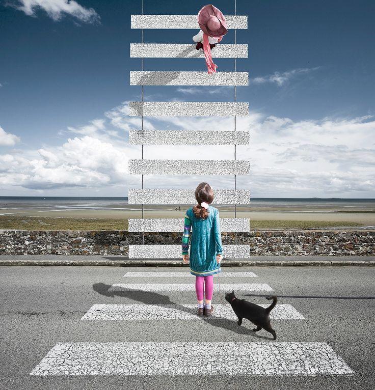 Photo Le zèbre - Alastair Magnaldo