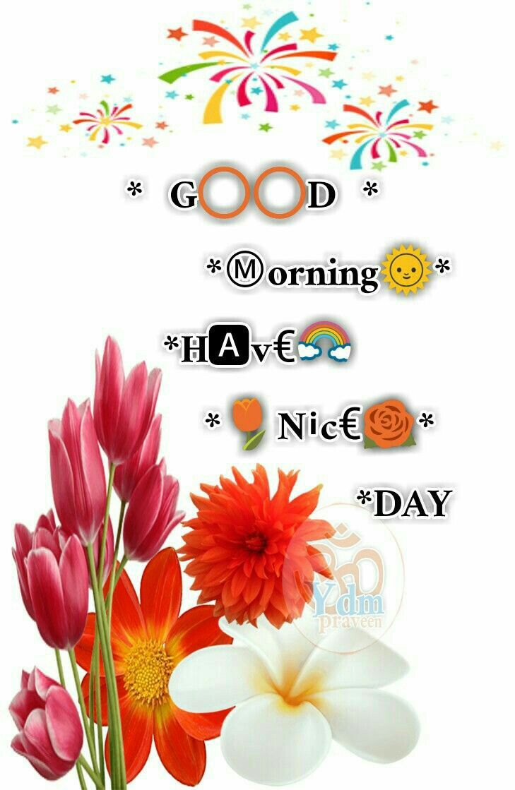 16 Best Good Morning Greetings Images On Pinterest Morning Quotes
