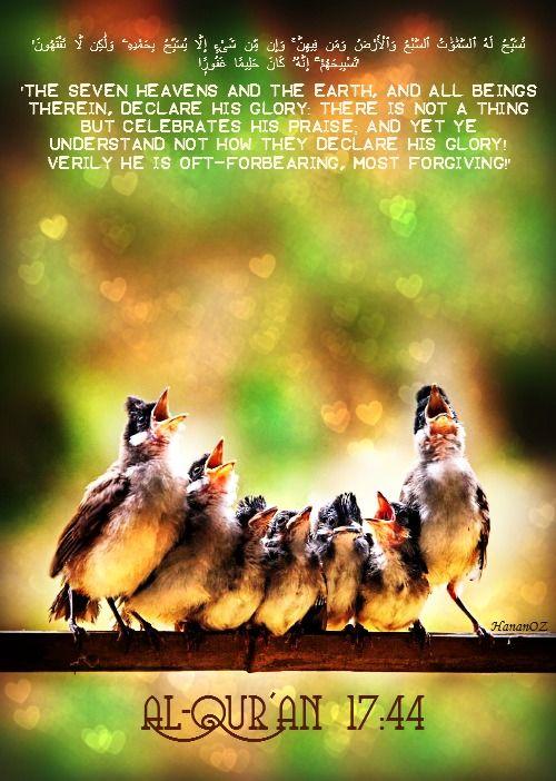 'تُسَبِّحُ لَهُ ٱلسَّمَٰوَٰتُ ٱلسَّبْعُ وَٱلْأَرْضُ وَمَن فِيهِنَّ ۚ وَإِن مِّن شَىْءٍ إِلَّا يُسَبِّحُ بِحَمْدِهِۦ وَلَٰكِن لَّا تَفْقَهُونَ تَسْبِيحَهُمْ ۗ إِنَّهُۥ كَانَ حَلِيمًا غَفُورًۭا' Al-Qur'an (17:44)