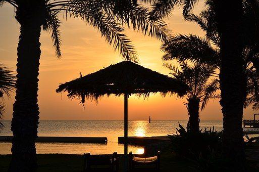 パーム, 日の出, 熱帯, ヤシの木, ビーチ, 海, 風景, 休暇