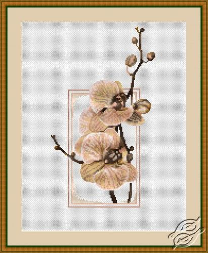 Orchid - Cross Stitch Kits by Luca-S - B288