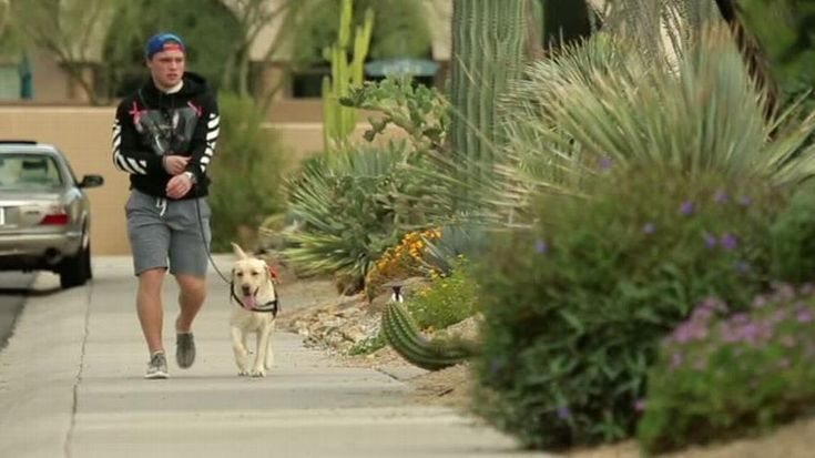 Linda Cohn profiles Coyotes rookie Max Domi, who plays hockey with Type 1 diabetes, and his service dog Orion.