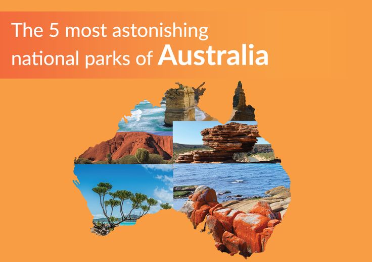 Discover the 5 astonishing parks of Australia!