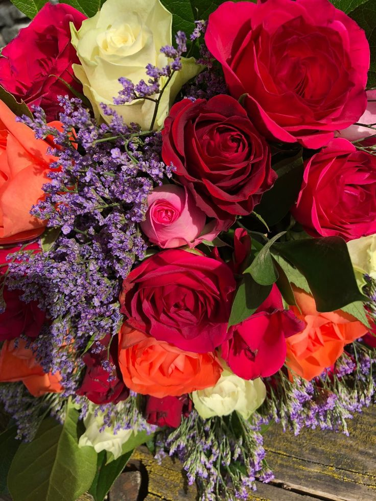 bright red roses lonely bouquet Sunday 24th June 2018