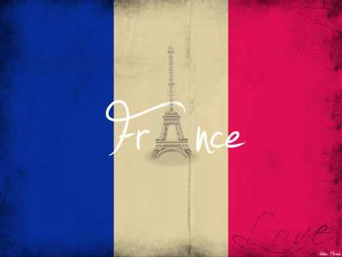 FOLLOWERS IN FRANCE: I'm praying for you all. Today...and probably the next few weeks are going to be hard. I know you all can get through this. You're strong, and I know you can overcome this. I'm sorry that you're hurting...and I wish I could somehow send a whole bunch of love and puppies to you. If you need anyone to message, I'm here. Hang in there, guys. /:) You are loved, and soon, this hell will come to an end. Until then, keep being strong for us.❤️