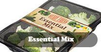 Essential Mix
