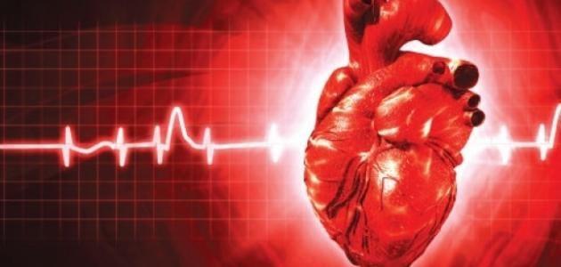 تعريف نبض القلب السنة الثالثة ابتدائي Http Www Seyf Educ Com 2019 10 Nbde 9aleb 3ap Html Neon Signs Okay Gesture In A Heartbeat