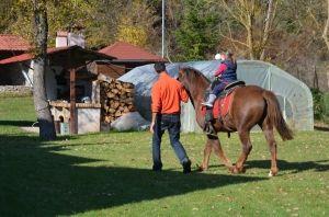 Λάμπης ,αγροτουριστική Φάρμα, Φάρμα ζώων, Ράντζο πόνυ