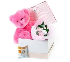 44 best online flowers and gifts to australia images on pinterest a beautiful gift set made with a plush bear yummy body suite baby tea for mum and a bouquet of socks bodysuit and singlet negle