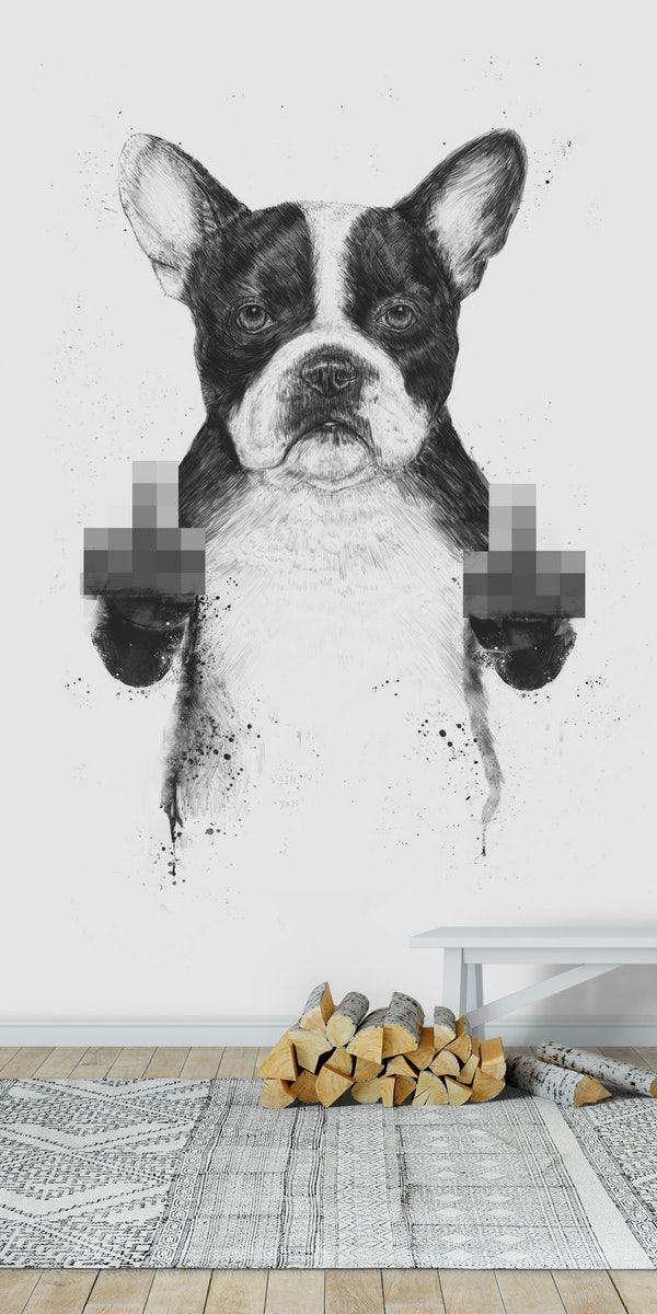 Censored Dog Wall Mural From Happywall Wallpapers Cute Wallmurals Drawing Frenchie Happywall D In 2020 Dog Wallpaper Funny Wallpapers Aesthetic Iphone Wallpaper