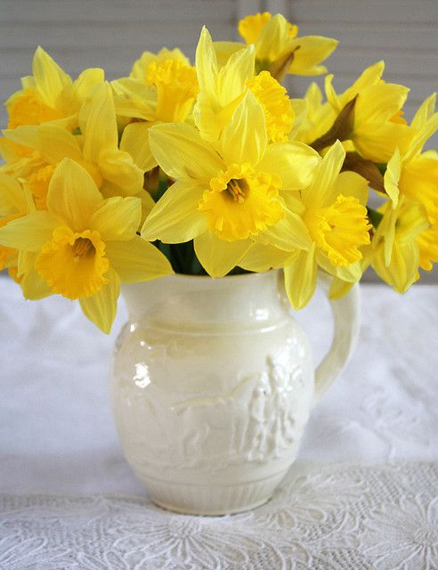 daffodils - My favorite, in case there was any doubt!
