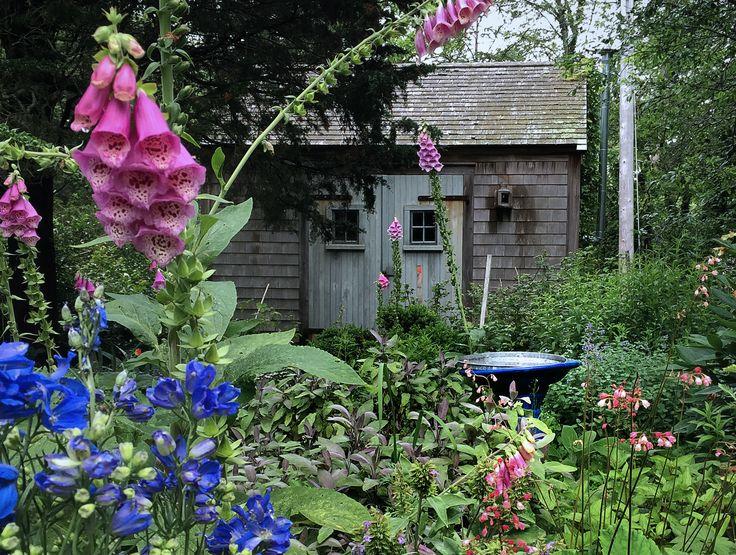 Best Toolshed Images On Pinterest Gardening Tools Garden