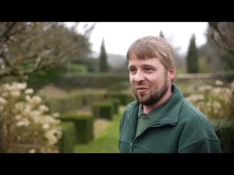 Billy Showell at Pashley Manor Gardens in March Taster. Lots of great tips for your garden. YouTube #billyshowell
