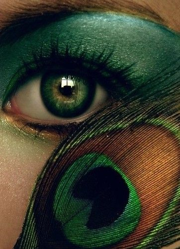 A beautifully executed peacock eye