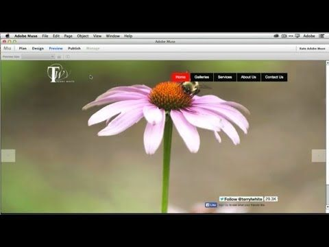 ▶ How To Get Started With Adobe Muse CC - 10 Things Beginners Want To Know How To Do - YouTube