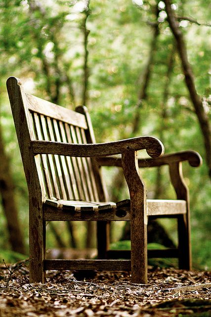 To sit on a bench in the cool fall weather, listening to the wind and the rustling of leaves <3