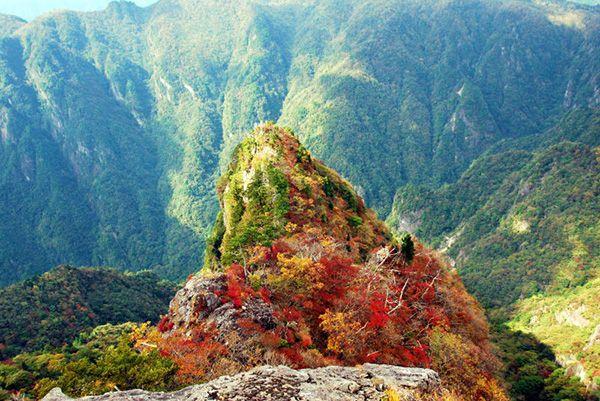 奈良の大台ケ原周辺 山頂にある大蛇嵓(だいじゃぐら)