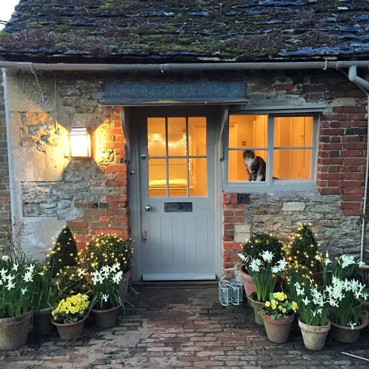 """""""Gardening till it's dark. Lovely white Narcissus Thalia have taken over from the yellow Tete a Tete around the door #thehatchseend #countryhomes"""