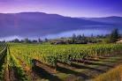 Gray Monk Winery