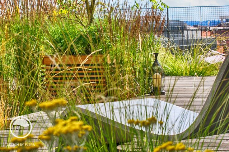 #landcape #architecture #garden #rooftop #meadow #resting #place
