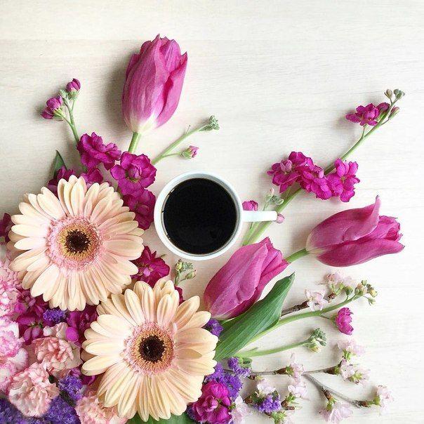 прикольные поздравления с добрым утром в картинках с цветами можно назвать одними