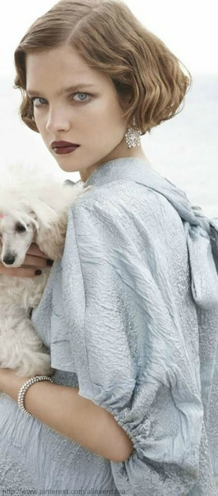 Pampered Pets | The House of Beccaria#