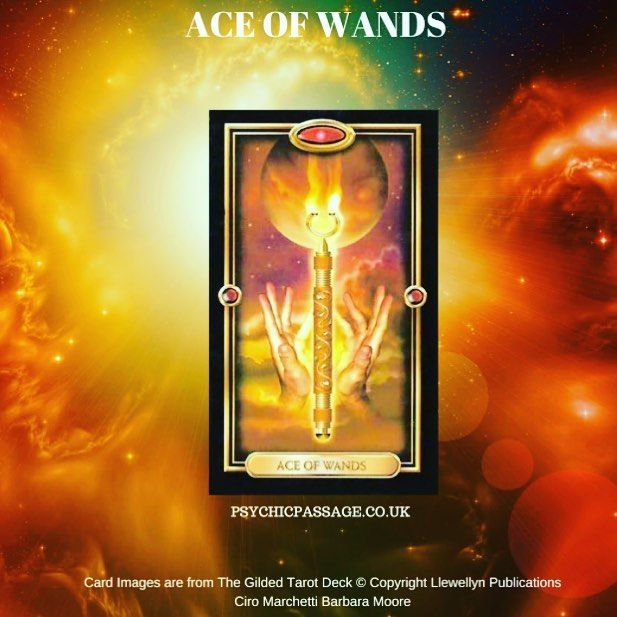 Todays Tarot card is the Ace of Wands it is the element of fire and know as a root /seed card when the Ace of Wands appears it normally means we are about to enter the first phase of a cycle a new opportunity for a spiritual, creative or passionate adventure. I love how the cards correlate with the universe because today there was a new moon 8 degrees Libra this is also the first phase of the moon cycle and the best time to plant a seed of intention , make a wish list or set your goals for…