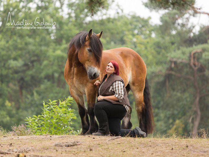 5.3.16 in Poing, Bayern: Wenn du schon immer wissen wolltest, wie positive Verstärkung funktioniert und wie du damit eine fantastische Beziehung zu deinem Pferd aufbauen kannst, dann ist dieser Clickertraining-Vortrag mit Sylvia Czarnecki (Sady) genau das richtige für dich!
