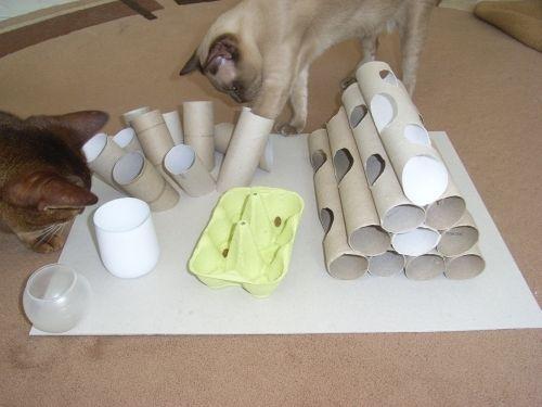 Günstiges Katzenspielzeug gesucht? Wir zeigen wie man ein Katzenfummelbrett ganz einfach selber basteln und für Abwechslung im Katzenalltag sorgen kann.