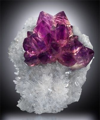 Amethyst on Quartz, Jackson Crossroads, Wilkes Co., Georgia.-