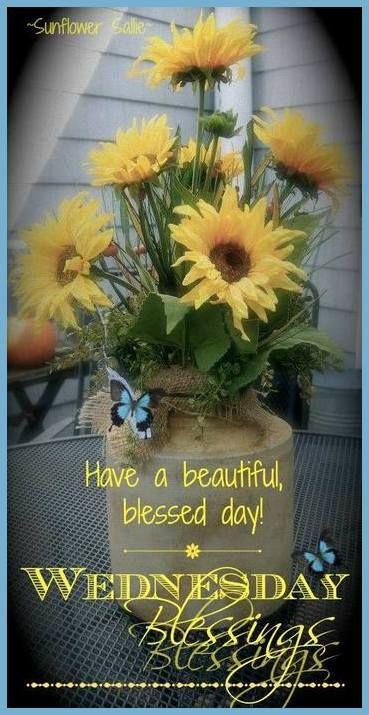 Happy Wednesday, enjoy today's dose!                                                                                                                                                                                 More
