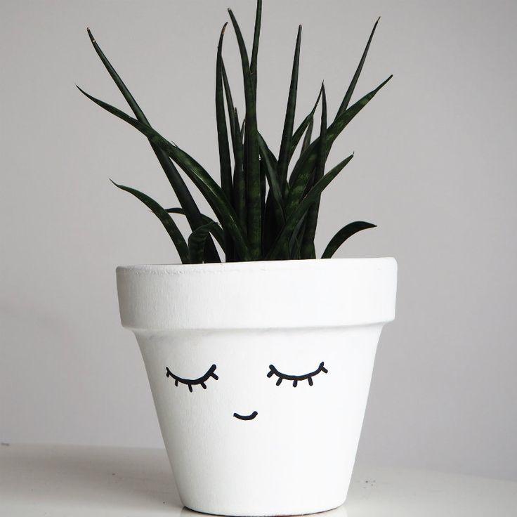 Αλόη ή αλλιώς Aloe Vera: ένας πολύτιμος σύμμαχος σε συσκευασία γλάστρας!  #aloevera #αλοη #αλοηγιαεγκαυματα #αλοηγιακαλλυντικα #αλοηγιαψωριαση #αλοηδεντρο #αλοημελουλουδι #αλοησεγλαστρα #αλοηστοχωμα #διακόσμηση #ενηλικηαλοη #θεραπευτικαφυτα #ιδέες #τζελαλοης #χυμοςαλοης
