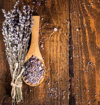 DRIED CULINARY LAVENDER BUDS $35.00 – $95.00