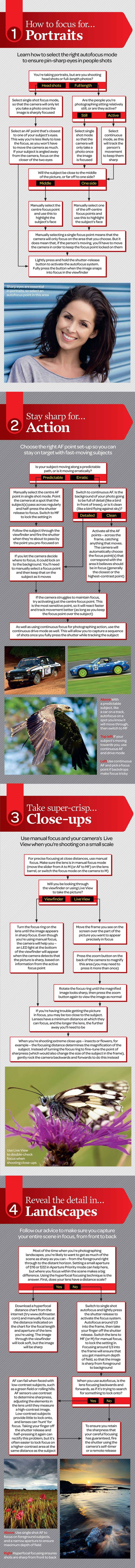 Photography Tips   How to focus your camera for any subject or scene: free photography cheat sheet