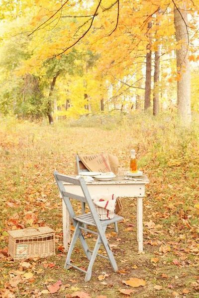 Fall Picknick