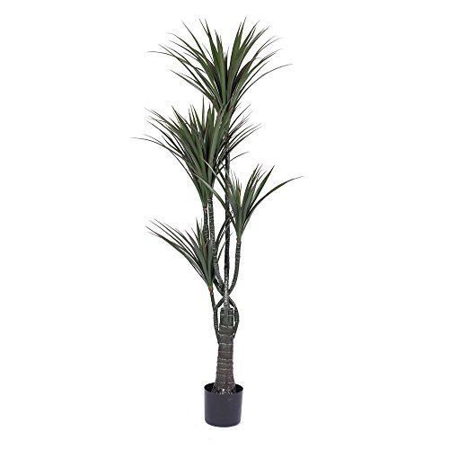 60'' Artificial Giant Yucca Tree in Black Plastic Pot
