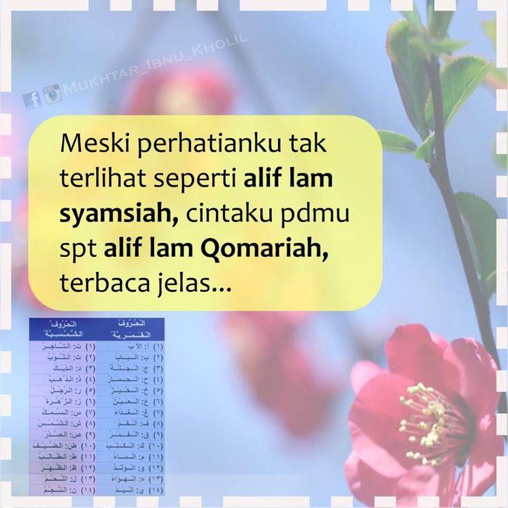 13055334_1059240150830842_1180915588404990544_n.jpg (960×960)