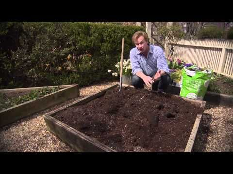 Gardening In Raised Beds | At Home With P. Allen Smith