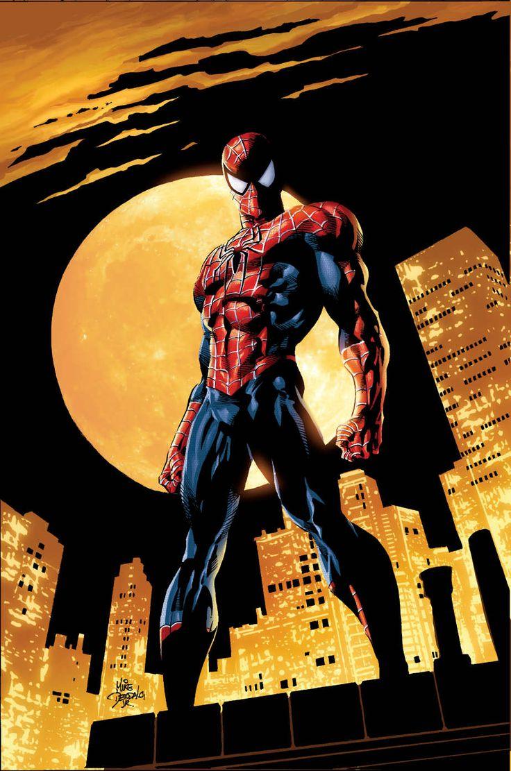 Capa de Amazing Spider-Man #528
