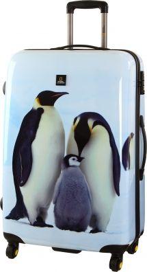 #penguinawarenessday #pinguin großer Reisekoffer für 14 Tägige Reise. Wer liebt sie nicht?! Pinguine sind einfach superniedlich und sympathisch! Alleine die Beschreibung flugunfähiger Seevogel hört sich ja schon tapsig uns witzig an.  Zum heutigen Penguin Awareness Day möchten wir darauf aufmerksam machen. Hier geht´s zum Koffer: https://www.kofferprofi.de/Marken/Saxoline/National-Geographic-Penguin-4-Rad-Trolley-71cm-09-penguin.html
