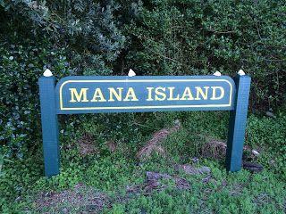 Mana Island visit this island sanctuary off the coast of Porirua